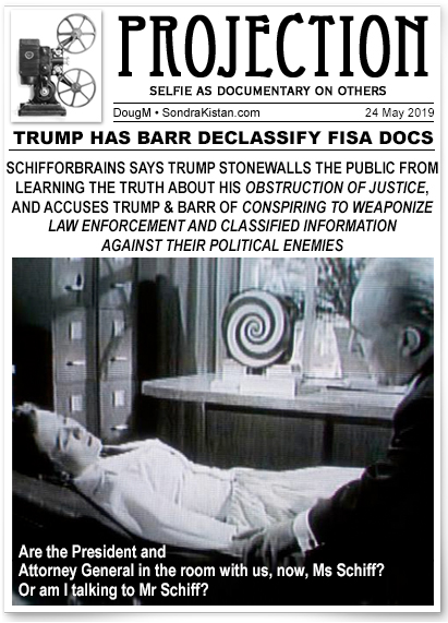 projection-schiff-coverup.jpg