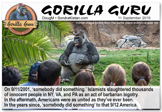 gorillaguru-9-11.jpg