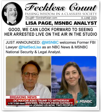 feckless-msnbc-lisa-page.jpg